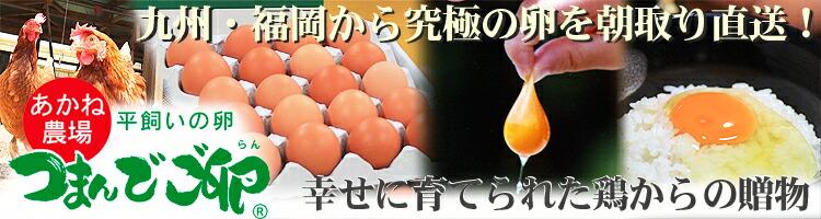 つまんでご卵 つまめる卵