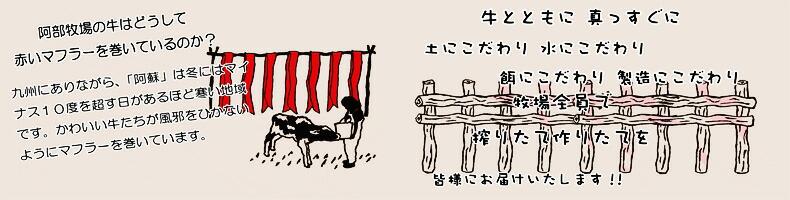 阿部牧場 赤いマフラーの牛