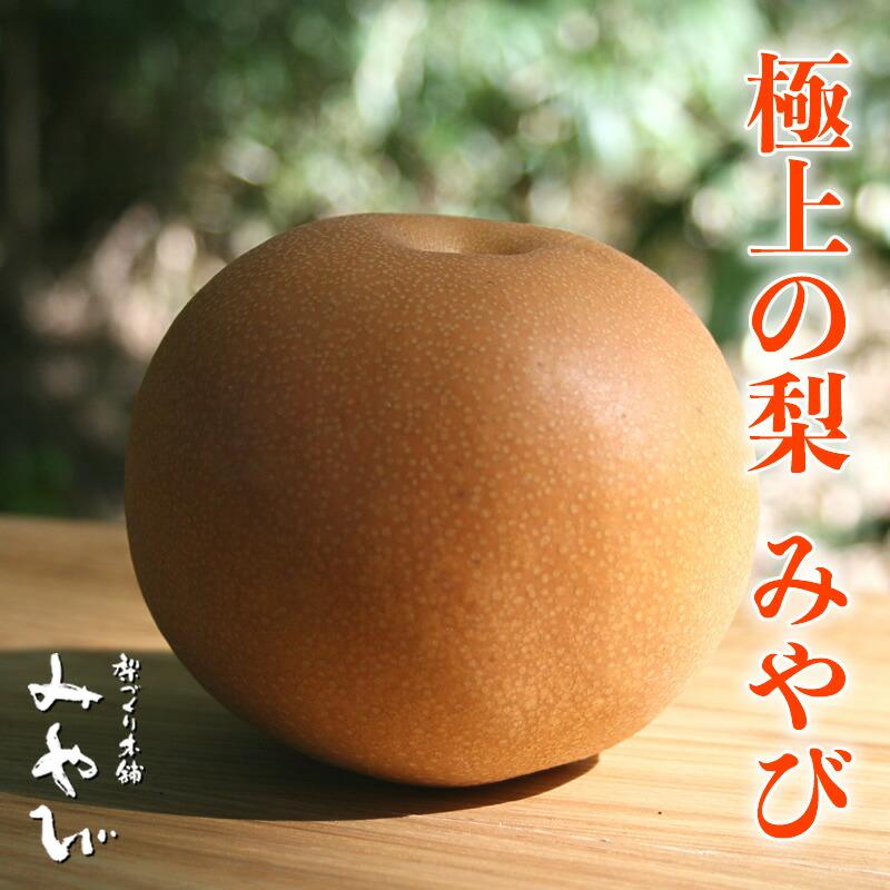 極上の梨 みやび  梨園 茨城県 ふるさと