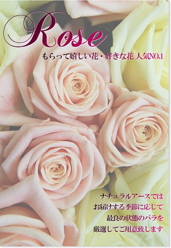 バラの魅力 バラの花