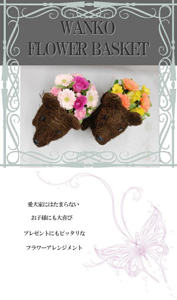 可愛い犬とお花の贈り物