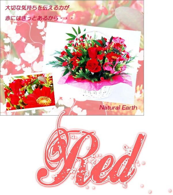 赤いアレンジメント