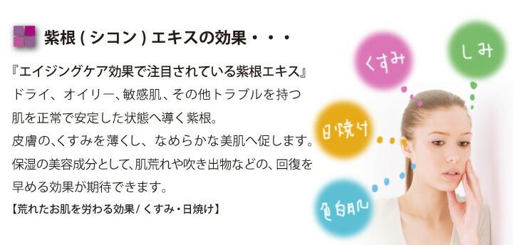 紫根(シコン)