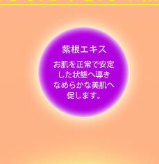 紫根エキス