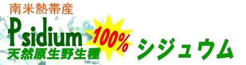 シジュウム茶 ネット通販