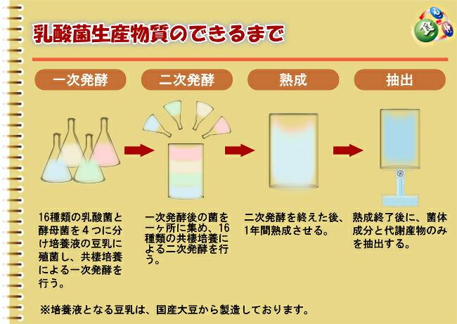 乳酸菌生産物質の作り方