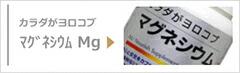 マグネシウム Mg