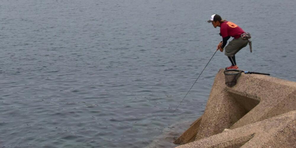 釣り方の応用編。ロッドアクション+フォール!