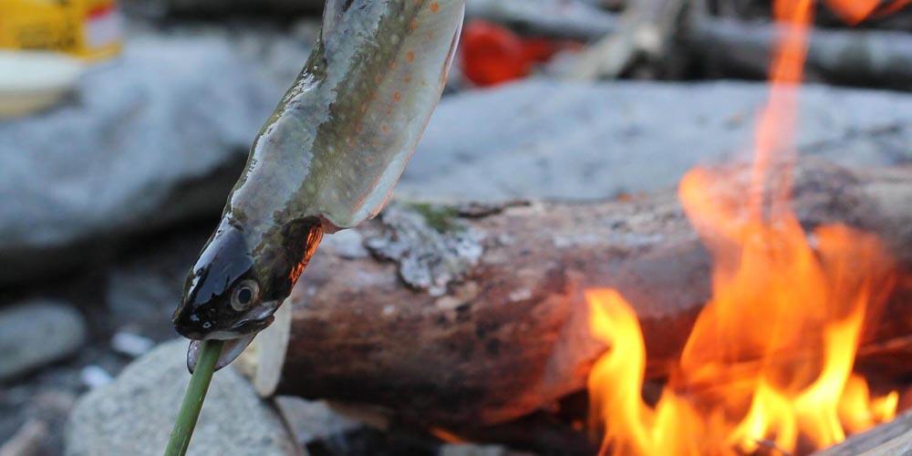 釣った渓流魚は香ばしい塩焼きで味わおう!