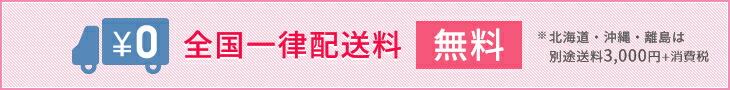 全国一律送料無料(沖縄・北海道・離島は3000円)
