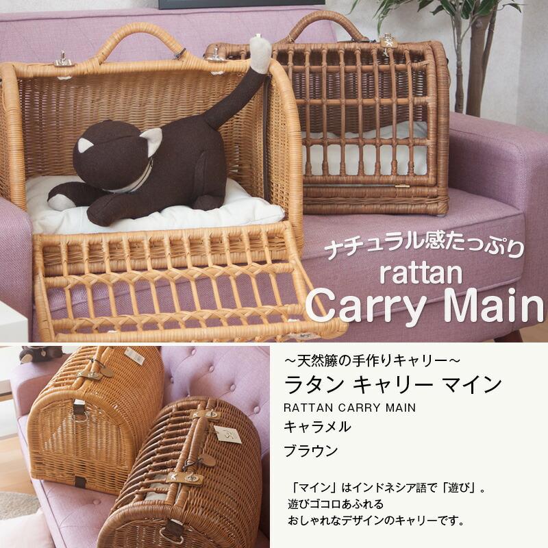 rattan-carry_MAIN_ロゴ