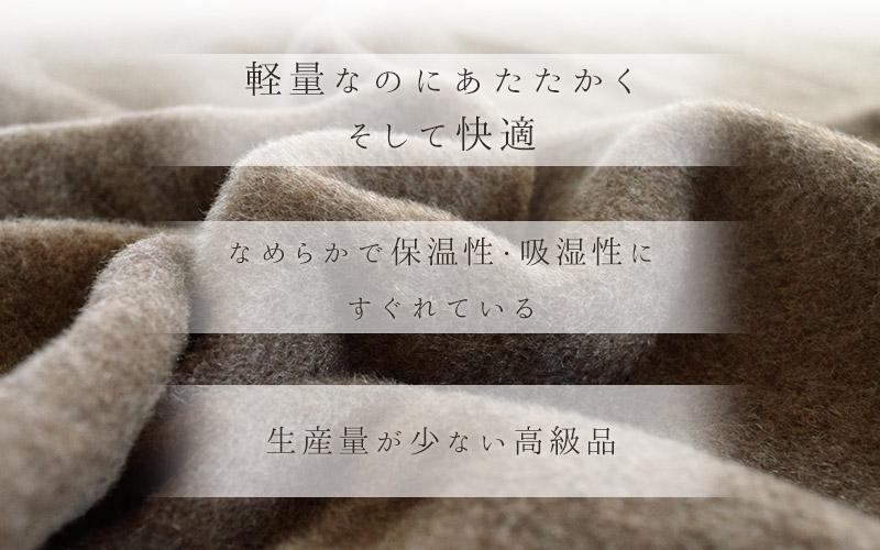 カシミヤ・cashmere