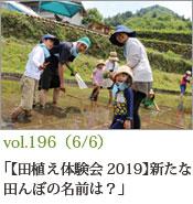 田植え2019
