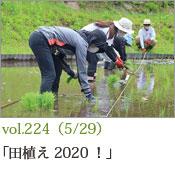 田植え2020!