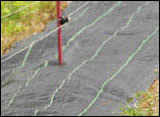 猿害防止電気柵 モンキーショック部材写真