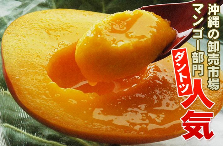とろける甘さのアップルマンゴー