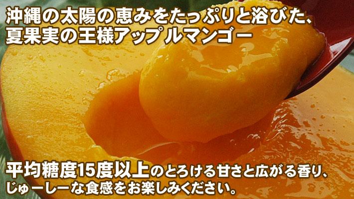 沖縄県産完熟アップルマンゴー2kg