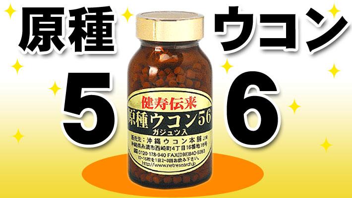 原種ウコン56