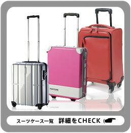 Ace(エース)のスーツケースベルト