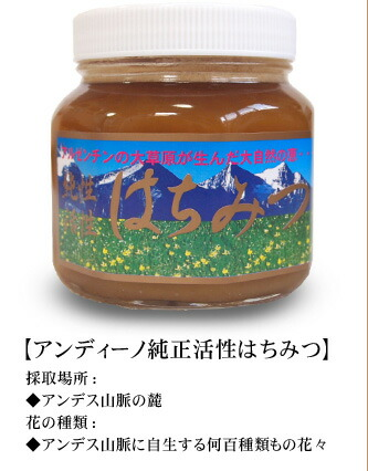 [アンディーノ pure active honey] a collection place: The kind of the foot flower of the Andes: Flowers of several hundred kinds growing wild in the Andes