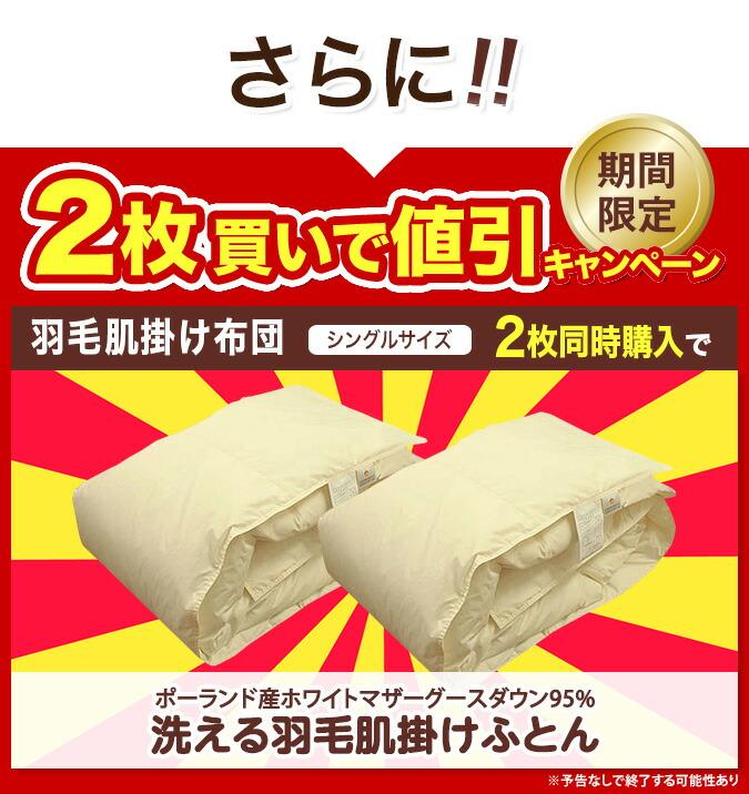2枚セットが今だけ800円引きの32800円