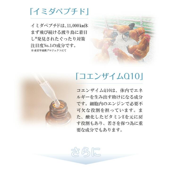 イミダペプチドとコエンザイムQ10