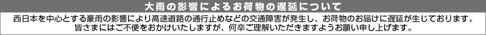 西日本集中豪雨2018年7月