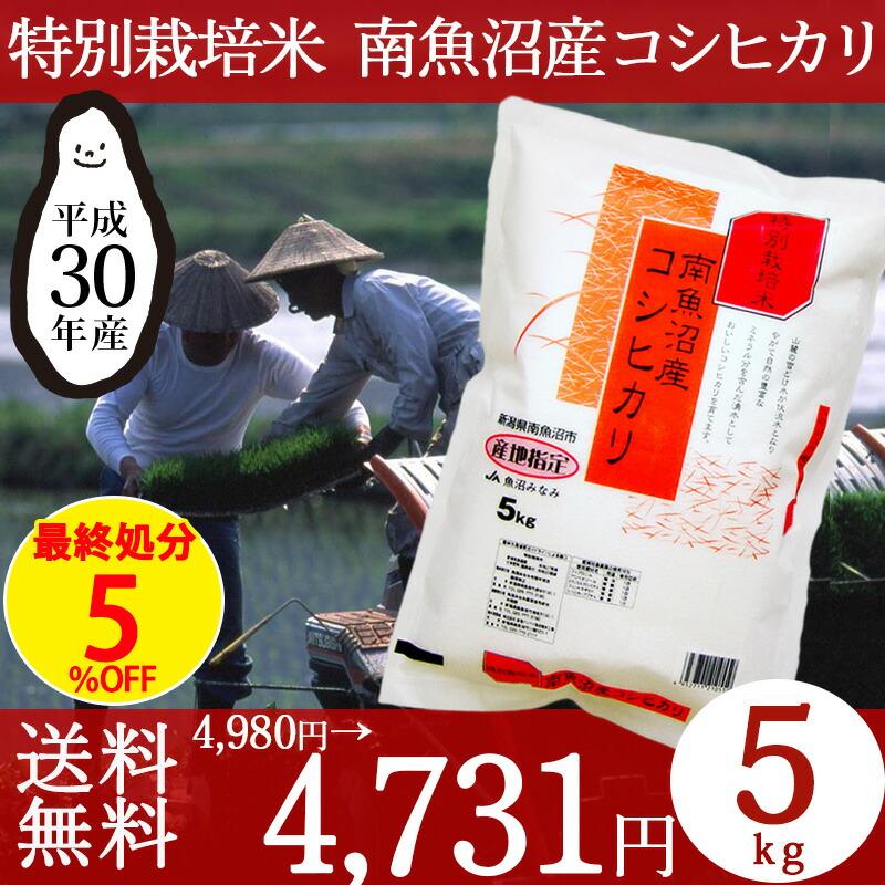 特別栽培米南魚沼産