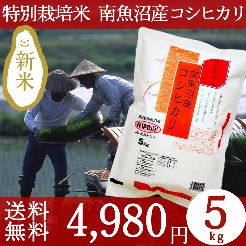 特別栽培米南魚沼産コシヒカリ