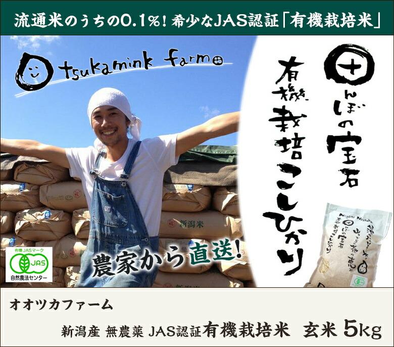 大塚ファーム 有機栽培米 玄米5kg