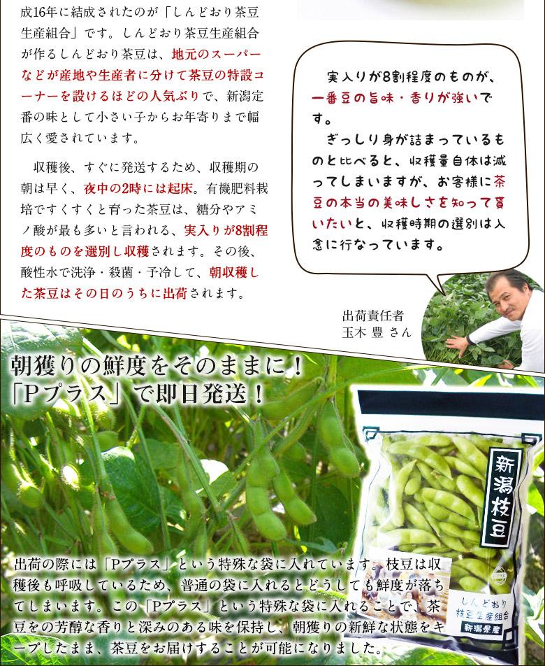 【楽天市場】新潟産 朝獲り枝豆 湯あがり娘 1.2kg(300g×4袋 ...