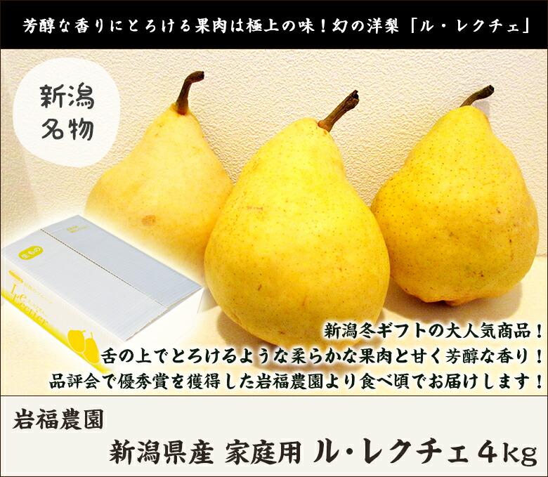 岩福レクチェ家庭4