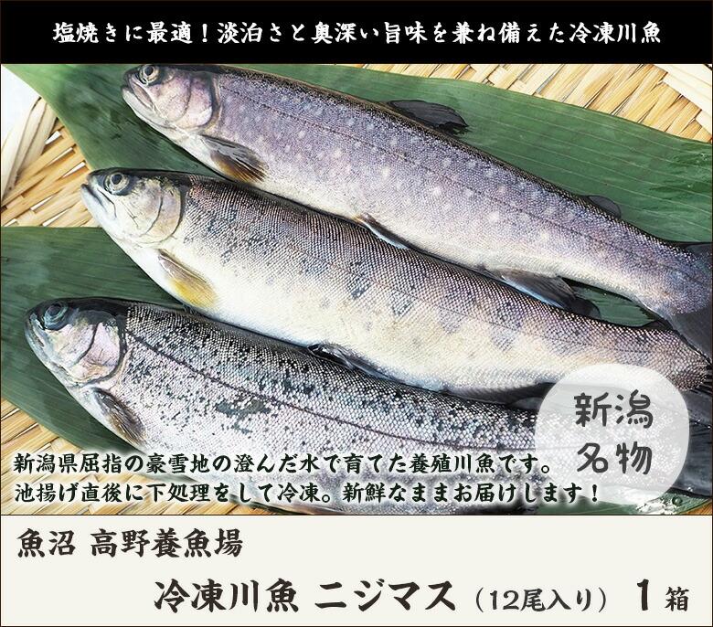 冷凍ニジマス1箱(12尾入り)
