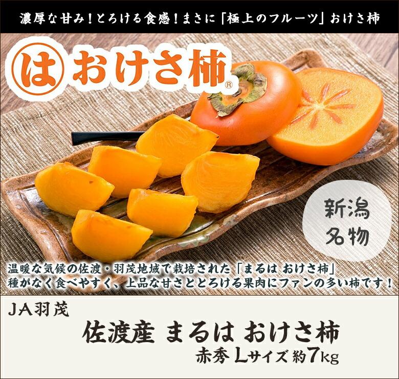 JA羽茂 おさけ柿 L 7kg