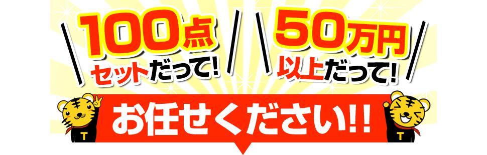 100点セットだって!50万円だって!