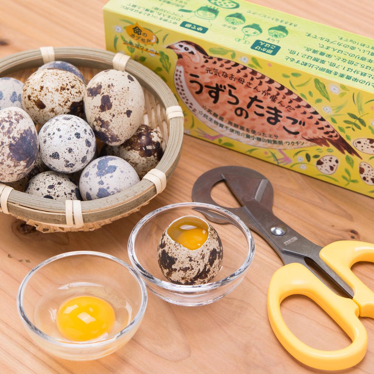 の 卵 ウズラ