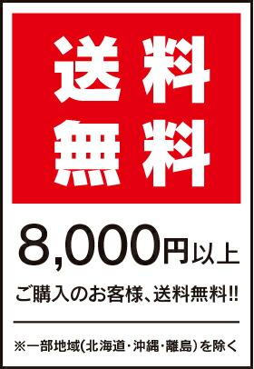 8000円以上送料無料