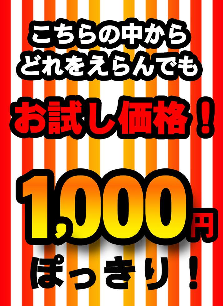 どれをえらんでも1,000円!