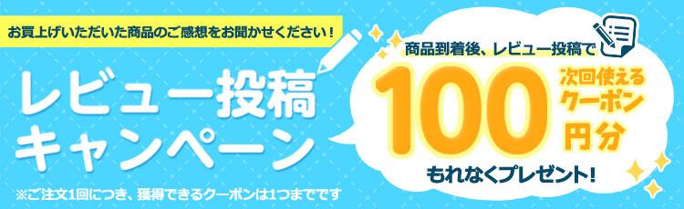 レビュー投稿で100円クーポン