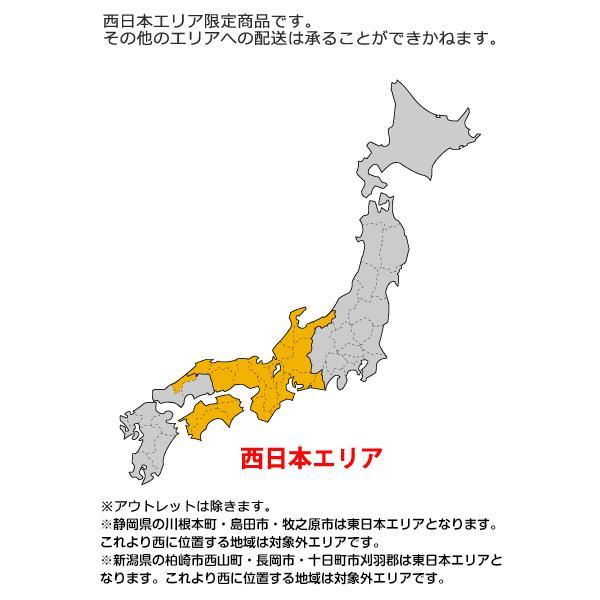 西日本専用