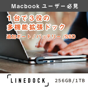 LINEDOCK13 スペースグレー 13インチ SSD 256GB