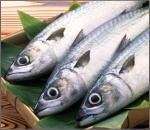 飛び出したらゴメンナサイ!ぴっちぴちの鮮魚セット2番