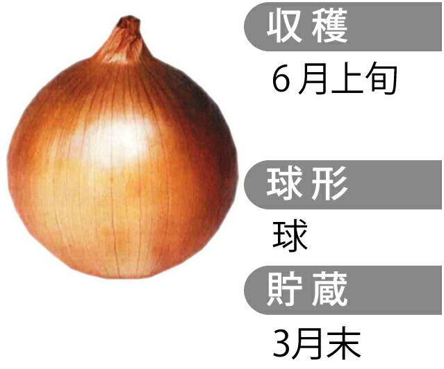 もみじ3号(アサヒ3号)