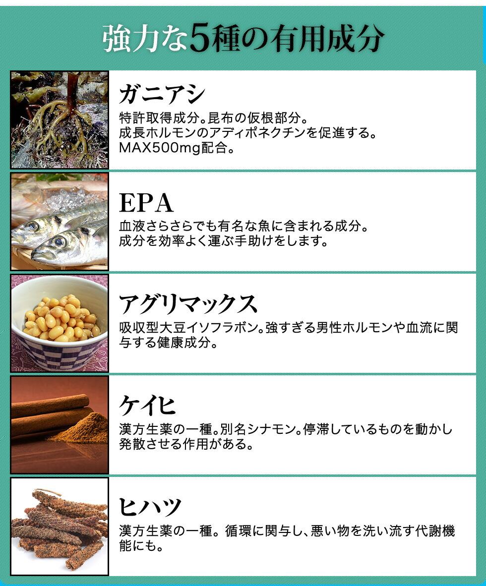 強力な5種の有用成分 ガニアシ、特許取得成分。昆布の仮根部分。成長ホルモンのアディポネクチンを促進する。MAX500mg配合。EPA 血液さらさらでも有名な魚に含まれる成分。成分を効率よく運ぶ手助けをします。アグリマックス、吸収型大豆イソフラボン。強すぎる男性ホルモンや血流に関与する健康成分。ケイヒ、漢方生薬の一種。別名シナモン。停滞するものを動かし発散させる作用がある。ヒハツ、漢方生薬の一種。循環に関与し、悪い物を