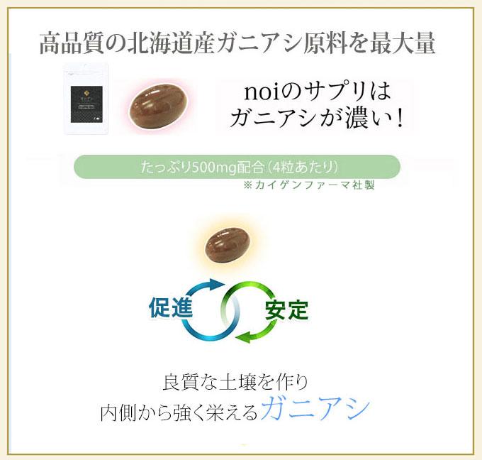 高品質の北海道産ガニアシ原料を最大量 noiのサプリはガニアシが濃い!たっぷり500mg配合(4粒あたり) 促進・安定 良質な土壌を作り内側から強く栄えるガニアシ