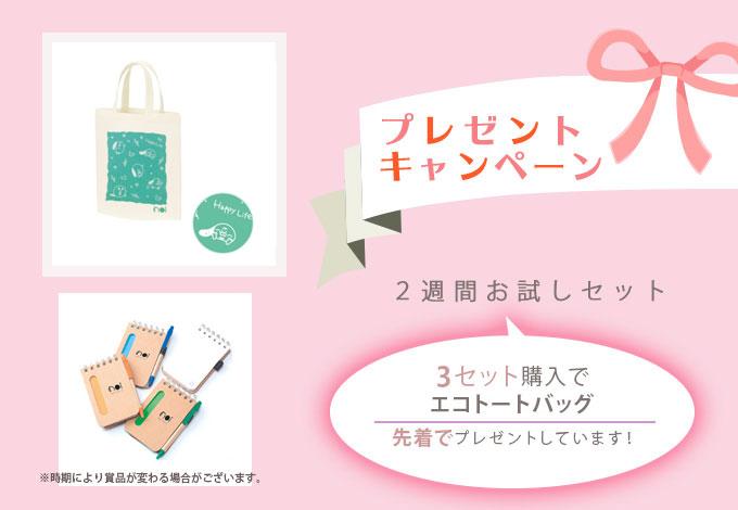 プレゼントキャンペーン 3セット購入でポーチ付きエコトートバッグプレゼント中!