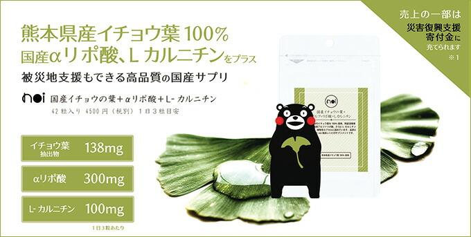 noi 国産イチョウの葉+アルファリポ酸+L-カルニチン