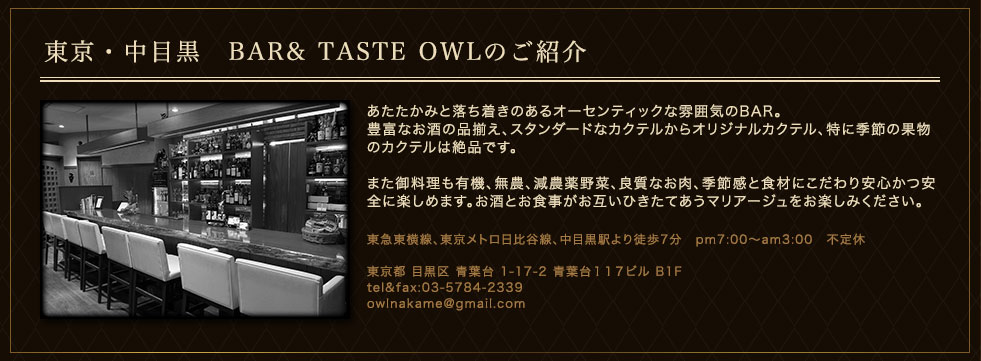 中目黒 BAR&TASTE OWLのご紹介 東京都目黒区青葉台1-17-2 青葉台117ビルB1F 03-5784-2339