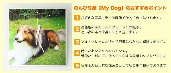 のんびり屋「My Dog」のおすすめポイント