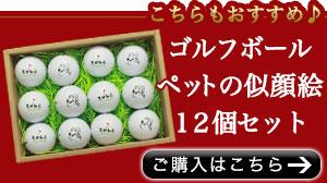 似顔絵ゴルフボール12個セット購入こちら